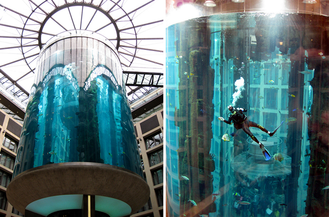 The most amazing hotels ever everyone should have these for Shivers fish house