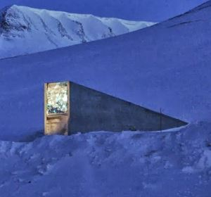svalbard seed vault featured image