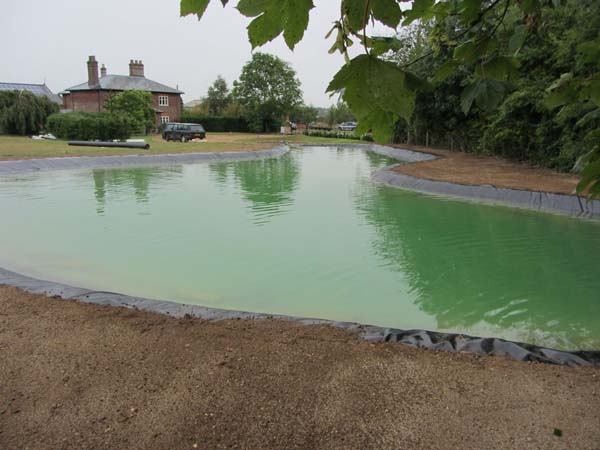 how to make a pond safe for swimming