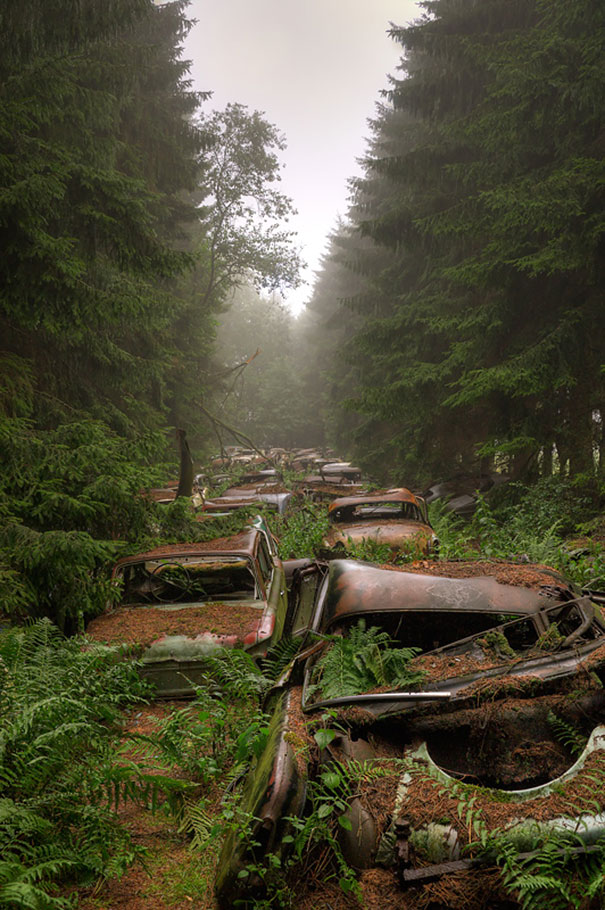 Chatillion Car Graveyard 1