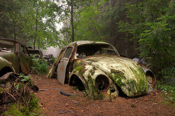 Chatillion Car Graveyard 2