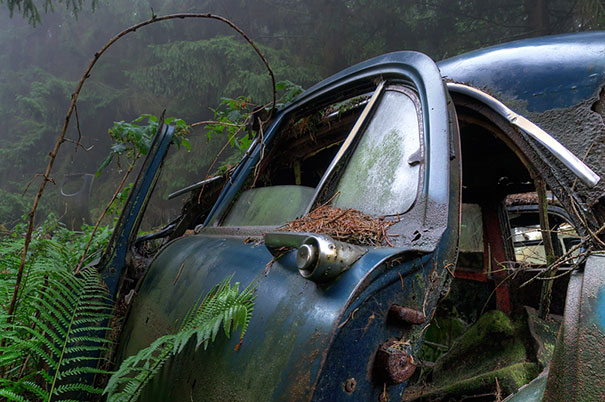 Chatillion Car Graveyard 7
