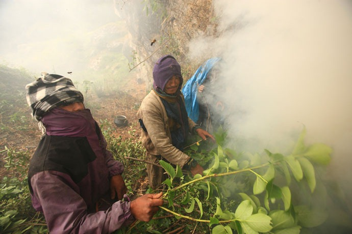 honey-hunters-nepal-10