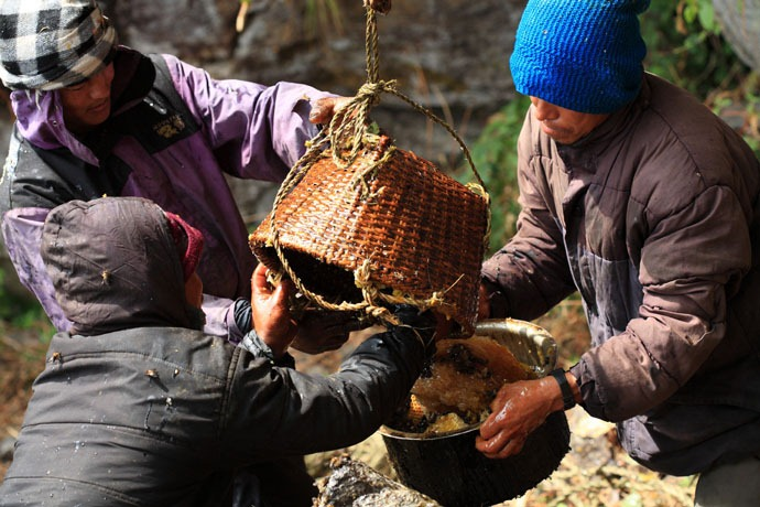 honey-hunters-nepal-21