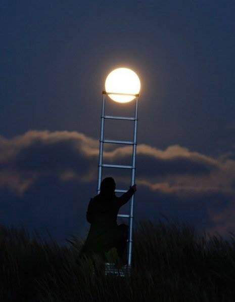 clever moon pic 1