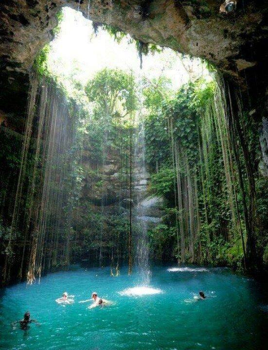 The 10 Most Stunning And Amazing Jungle Swimming Pools