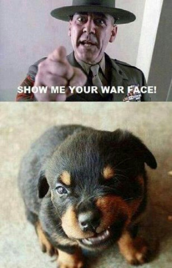 show me your war face!