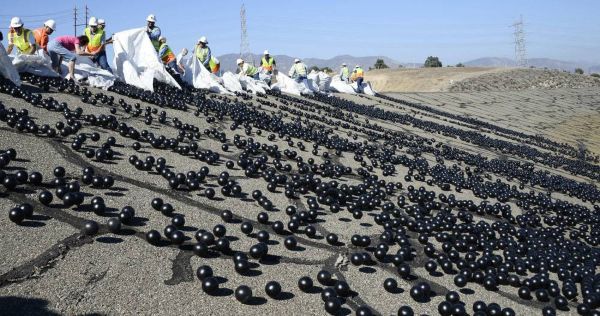 los angeles shade balls 5