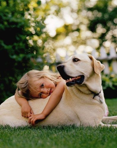 labs with kids 4
