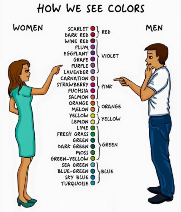 men vs women 9
