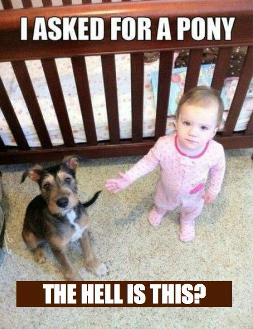 Image of: Vitamin Ha Funny Child Meme Cools And Fools 20 Of The Best Baby Memes Ever Number Is Brilliantly Cute