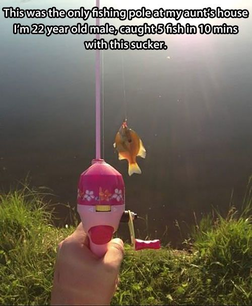 toy fishing rod